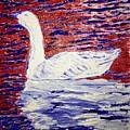 On The Pond by Jack Bunds