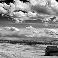 On The Prairie by Bob Mintie