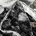 On The Rocks by Brad Allen Fine Art