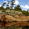 On The Rocks by David Loblaw
