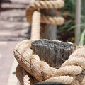 On The Ropes by Rob Hans