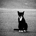 On The Streets by Ioakim Hadjithomas