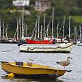 On The Waterfront by Toula Mavridou-Messer