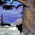 On The West Rim Of The Grand Canyon by Merton Allen