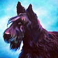 Once A Terrier Always A Terrier by Robert Pankey