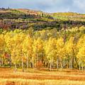 One Autumn by David Millenheft