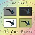 One Bird Poster And Greeting Card V1 by Felipe Adan Lerma
