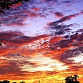 One Dawn Autumn Sky by Concolleen's Visions Smith