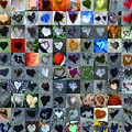 One Hundred And One Hearts by Boy Sees Hearts