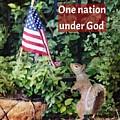 One Nation Under God by Diane Lindon Coy