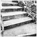 One Step Two Step  by Cory Keene