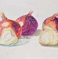 Onions And Garlic by MaryBeth Minton