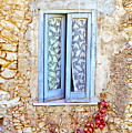 Onions And Garlic On Window by Silvia Ganora