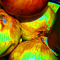 Onions Apples Pepper Closeup by George D Gordon III