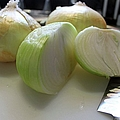 Onions I by Michiale Schneider