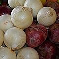 Onions IIi by Michiale Schneider