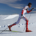 Online Winter Sports Equipment by SportReseller