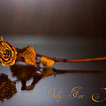 Only For You Rose V2 by Alex Art and Photo