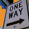 Only One Way by Karol Livote