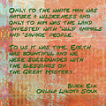 Only To The White Man by Paulette B Wright