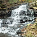 Onondaga 6 - Ricketts Glen by Cindy Treger