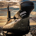 Onondaga Submarine by Tracy Munson
