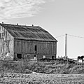 Ontario Farm 5 Bw by Steve Harrington