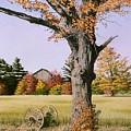 Ontario In October by Conrad Mieschke
