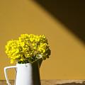 Good Morning Sunshine- Rapeseed Flowers And White Mug   by Guna Andersone