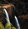 Opaekaa Falls by Debbie Ronning