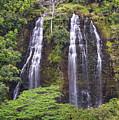 Opaekaa Falls - Kauai by Yefim Bam