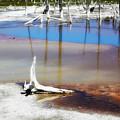 Opalescent Pool Yellowstone Np by Teresa Zieba
