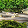 Oparara River by Robert Green