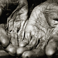 Two Old Hands by Skip Nall