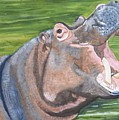Open Mouthed Hippo On Wood by Debbie LaFrance