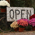 Open Sign With Flowers Fine Art Photo by James BO  Insogna