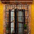 Open Window In Ochre by Mexicolors Art Photography
