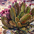 Opuntia Cactus by Donald Maier