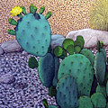 Opuntia by Snake Jagger