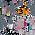 Orange 3 by Anne Cameron Cutri