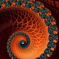 Orange And Aqua Spiral by Matthias Hauser