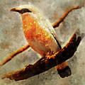 Orange And White Bird On The Branch by Jaroslaw Blaminsky