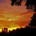 Orange And Yellow Sunset by Debra Lynch