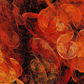 Orange Blossom Abstract by Andee Design