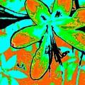 Orange Burst Flower by Brenae Cochran