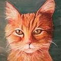 Orange Cat by Charleena Treanor