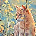 Orange Cat In Field Of Yellow Flowers by Tarisa Smith