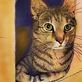 Orange Cave by Pookie Pet Portraits