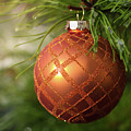 Orange Christmas Ball On Icy Evergreen Leaves by William Freebilly photography