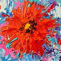 Orange Flower Daisy Modern Floral Impressionistic Palette Knife Work by Patricia Awapara